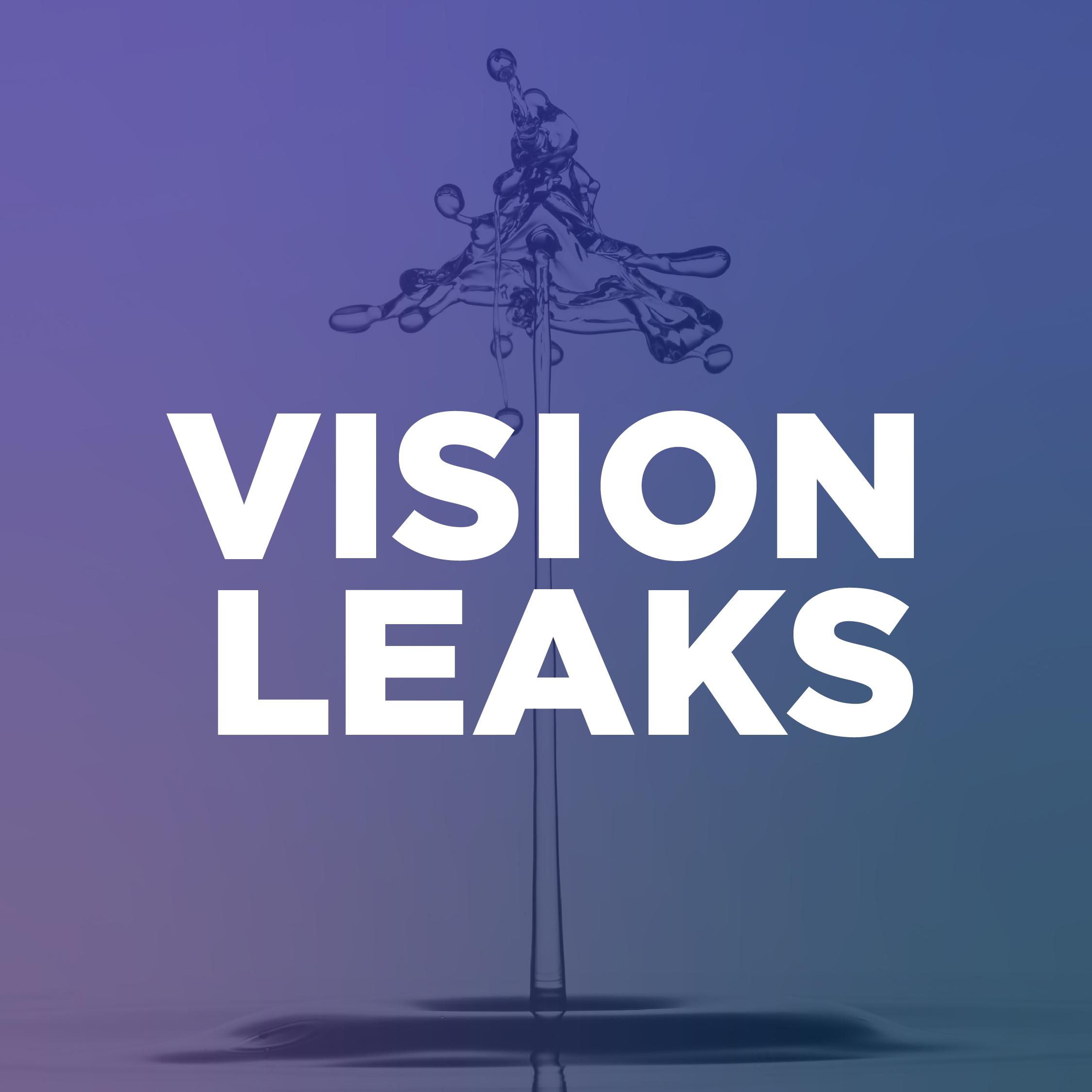 Vision Leaks-01 (1)