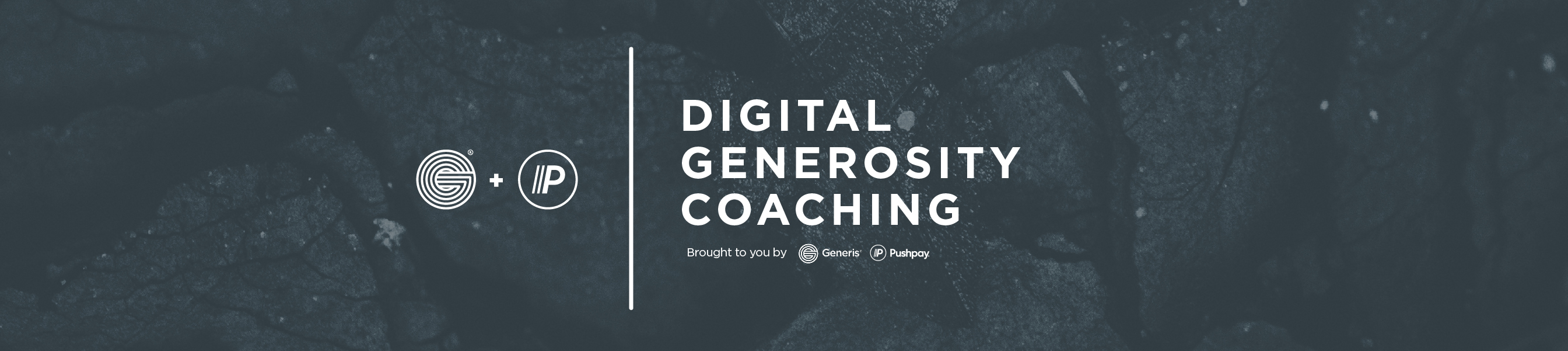 Digital Coaching_Header
